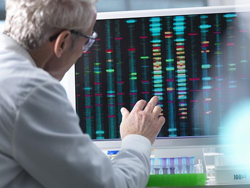 Scientist comparing DNA reults on a computer screen